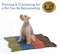 We love pets! Did you know crafting for animals can be good for YOU too? Read more: http://lby.co/1HLmxpx