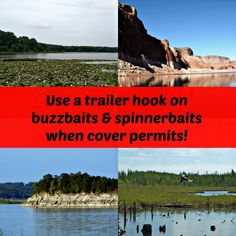 Spinnerbait & buzzbait fishing tip!