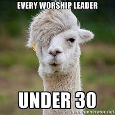 every worship leader under 30 llama meme - Google Search
