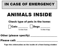 Disaster Preparedness for Your Pets