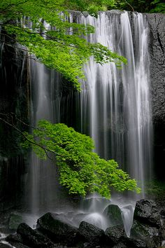 Tatsuzawa-fudoh Waterfall, Fukushima Japan   if thats true, wonder what all that radiation will do to it?