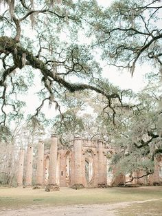 beaufort-weddings-old-sheldon-church-ruins-11