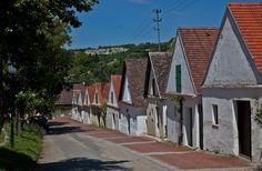 Kellergasse im Weinviertel, Austria - ©Carambol Austria, Architecture, Roman Snail, Landscapes, Pictures, Arquitetura, Architecture Design
