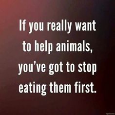 if you really want to help animals, you've got to stop eating them first #vegan 101 reality check