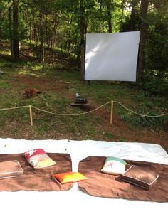 screen and picnic blankets