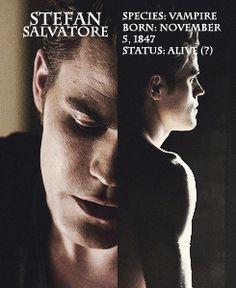 Paul Wesley - Stefan Salvatore DEAD and gone. Stefan Salvatore, Paul Wesley, The Vampire Diaries 3, Vampire Diaries The Originals, The Salvatore Brothers, Hot Vampires, Vampire Daries, Cw Series, Original Vampire