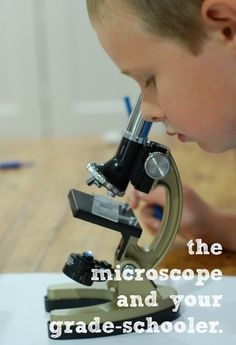 I will never forget the first time I looked into a microscope… A whole new world opened up for me that day as I realized firsthand that there is always more to life than there seems. It forever changed the way I saw the world. Rebecca from Sweet Hot Mess is with us today to share some great tips on using microscopes with children.