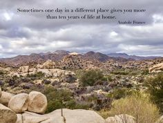 March 2018 ~ Joshua Tree National Park #travel #quotes #travelquotes