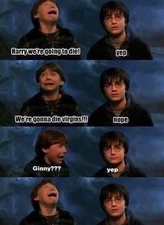 LOL - Harry Potter - www.funny-pictures-blog.com