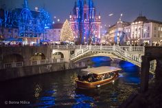 Festive Tourist boat