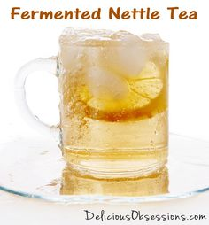 A new way to enjoy stinging nettle is to ferment it. Many people already drink nettle tea for nutritional benefits, but fermenting the tea unlocks more benefit. Nutrition Food List, Vegetable Nutrition, Nettle Tea Benefits, Fruit For Diabetics, Kefir Recipes, Jerky Recipes, Fermentation Recipes, Water Kefir, Kombucha Tea