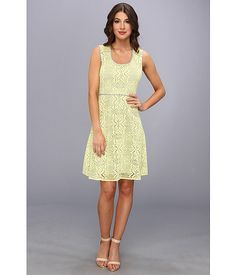 Marc New York by Andrew Marc Crochet Lace Fit & Flare Dress MD4L3129
