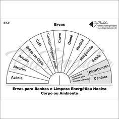 Gráficos 07-E