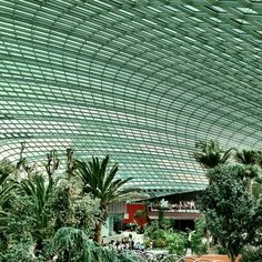 Stunning interior of the Dome @ #Garden by the bay #singapore #tourism #iphone4s #nofilter #architecture #sg #tourist #attraction #guosheng #guoshengz