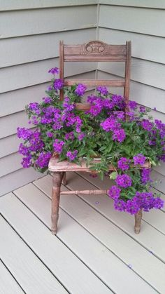 Garden Seating, Garden Chairs, Garden Planters, Container Flowers, Container Plants, Container Gardening, Repurposed Items, Repurposed Furniture, Chair Planter