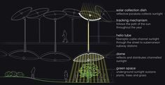 NYC's Lowline Underground Park To See Light of Day