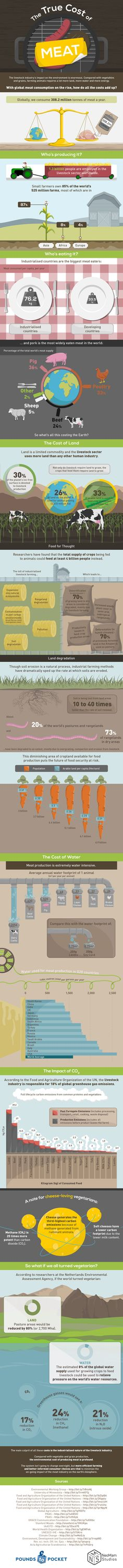 """What would it mean for our environment if all of us did become vegans?  A lot of good things, according to an infographic put together by Pounds to Pocket.  """"The livestock industry's impact on the climate is enormous,"""" it says. """"Compared with vegetables and grains, farming animals requires a lot more land, more water and more energy."""""""