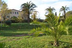 Can Sort es una masía ubicada en el Ampurdán, a medio camino entre Girona y Figueras . Su emplazamiento en una colina proporciona unas magníficas vistas de los Pirineos y la plana ampurdanesa. Rodeada de prados y jardines, sus espacios verdes se