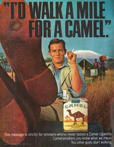 I'd walk a mile for a Camel. Retro Ads, Vintage Advertisements, Vintage Ads, Vintage Posters, Cigarette Men, Vintage Cigarette Ads, Corporate Crime, Man Mount, Advertising Logo