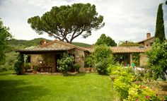 a view of il leccino cottage #paciano  http://www.countryslowliving.com/wp/accomodations/fontanaro/leccino/