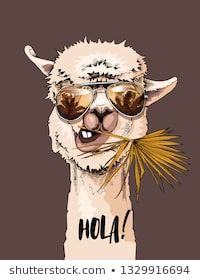 Portrait of Llama in a sunglasses with a fan palm leaf. Humor card, t-shirt composition, hand drawn style print. Art And Illustration, Illustration Mignonne, Illustrations Posters, Horse Skull, Llama Arts, Art Mignon, Cute Alpaca, Printable Animals, Funny Posters