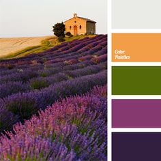 Color gamma of blossoming lavender shades and olive green tones is complemented by lighter shade of ocher and neutral light gray. Provence lavender color palette. may be interesting in the design of a study library. It suits well carnival costume of witch or sorceress.