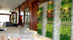green-living-walls-installer-company-113
