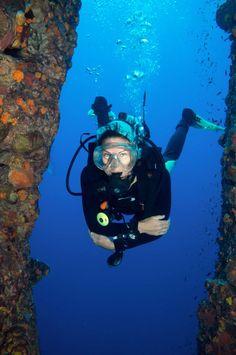 The Dive Inn - Diving Schools Scuba Diving Thailand, Diving School, Koh Phangan, Snorkeling, Sailing, Adventure, Rock, Schools, Diving
