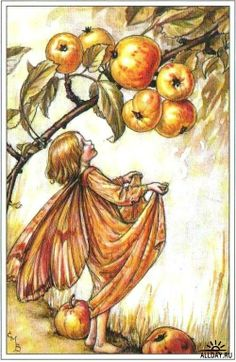 The Crab-Apple Fairy. Vintage flower fairy art by Cicely Mary Barker. Taken from 'Flower Fairies of the Autumn'. Click through to the link to see the accompanying poem. Cicely Mary Barker, Flower Fairies, Vintage Fairies, Vintage Art, Fairy Land, Fairy Tales, Apple Flowers, Autumn Fairy, Children's Book Illustration