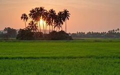 Nestled in North Goa within 9 kms from Baga, Siolim is one of the most beautiful villages of this beautiful Indian state.