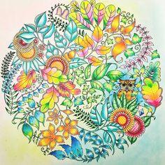 226 отметок «Нравится», 2 комментариев — Colorindo Meu Jardim Encantado (@colorindomeujardimencantado) в Instagram: «Muito boa tarde pessoal 😊 💖 🎨 🍃 🌸 Olha que lindooo esse colorido by @tpetina999 👏 👏 🔝 🔝 #sorta…»