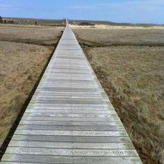 Sandwich MA Boardwalk   Cape Cod / Sandwich, MA boardwalk, Cape Cod - a walk of peace!