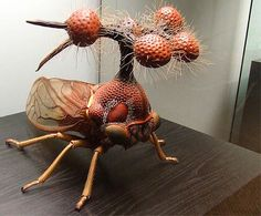 """The Most Surreal Insect On Earth -- Dark Roasted Blend: Weird and Wonderful Things -- The Treehopper """"Helicopter"""" from the Steamy Jungles of your Mind -- Sure, Salvador Dali came up with some lovely surreal forms in his art, but this thing blows them all out of the water. Seen in Berlin's Museum of Natural History, this is the Brazilian Treehopper, or Bocydium globulare - a real living insect, which only pretends to be an alien helicopter."""