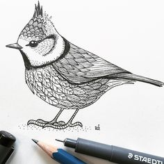 Trendy Little Bird Illustration Ink Ideas Bird Tattoo Ribs, Black Bird Tattoo, Bird Silhouette Tattoos, Unique Bird Feeders, Love Birds Painting, Mosaic Birdbath, Bird Artists, Diy Bird Bath, Mosaic Birds