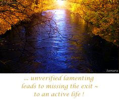 ... unverified lamenting leads to missing the exit ~ to an active life !