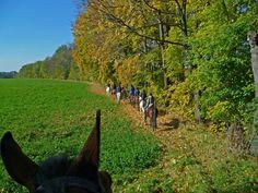 http://owwanderer.eu/countryside-horse-riding-2/countryside-horse-riding/