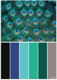 Palette of Peacock colors Oh my goodness. Peacock Color Scheme, Color Schemes Colour Palettes, Nature Color Palette, Peacock Colors, Colour Pallette, Blue Color Combinations, Color Mixing, Color Pop, Peacock Decor