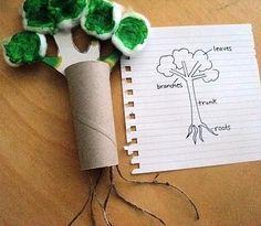 Parts of a plant/tree--good plants unit art project!