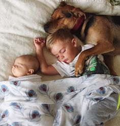 Famous Nappers Theo And Beau Welcome New Baby Sister To Their Cuddle Fests So Cute Baby, Baby Kind, Cute Kids, Cute Babies, Dogs And Kids, Animals For Kids, Baby Animals, Cute Animals, Gato Animal
