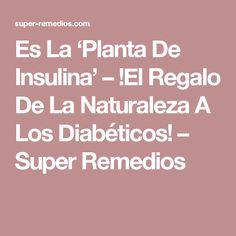 Es La 'Planta De Insulina' – !El Regalo De La Naturaleza A Los Diabéticos! – Super Remedios