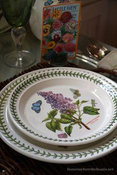 Tabletop gardening with Portmeirion Botanic Garden | homeiswheretheboatis.net #pottingshed #portmeirion