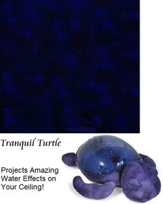 Tranquil Turtle - Great for Helping Kids Sleep this amazing turtle projects a water effect across the ceiling of a room.  Soothing sounds also help preschoolers fall asleep.