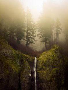 Seasonal waterfall in the Columbia River Gorge.I was riding my bicycle east on I-84 to Multnomah Falls when I saw it.  I stopped, hopped over the guard rail, and set up my tripod.  This shot was taken w/ my Panasonic... I hope to see the same scene next year w/ the 50D...