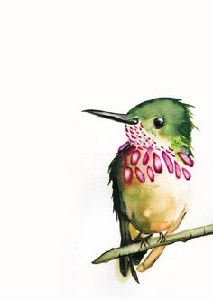 Watercolor -Strawberry Hummingbird Art Fine Art Print from Original Watercolor Watercolor -Strawberry Hummingbird Art Fine Art Print from Original Watercolor Fabric Painting, Watercolour Painting, Original Paintings, Original Art, Hummingbird Art, Temporary Tattoo Designs, Watercolor Animals, Butterfly Watercolor, Illustrations