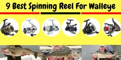 9 Best Spinning Reel For Walleye 2019 [Best Walleye Fish Reel Best Fishing Reels, Ice Fishing Rods, Surf Fishing, Walleye Fishing, Fishing Girls, Clinch Knot, Recreational Activities, Rest And Relaxation, Spinning Reels