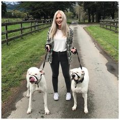 Went to HUHANZ with @mooshmooshvlogs @jono_yan @micaela_os @kelly_toon yesterday and walked these two giant beauties around the huha property!  these are #dogoargentino's and they are both deaf!  China (blue eye) is such a sweetheart and so shy and sleepy and didn't want to return so we had to lure her back with treats hehe same girl same  and Casper (tongue out) was a freaking cutie he kept smooshing his snout in between my knees and he loved it when I rubbed his cheeks!  they are both…