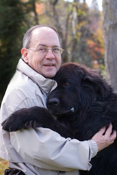 Biggest Newfoundland Dog | Hannibal Kennels Newfoundland Dogs