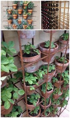 From wine rack to garden wall