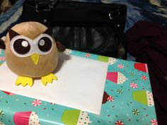 Can I go with you? Day 7 #yearofowly #lifeofowly