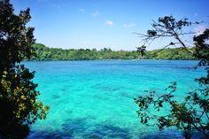 Pulau adalah sebidang tanah yang lebih kecil dari benua dan lebih besar dari karang, yang dikelilingi air. Kumpulan beberapa pulau dinamakan pulau-pulau atau kepulauan